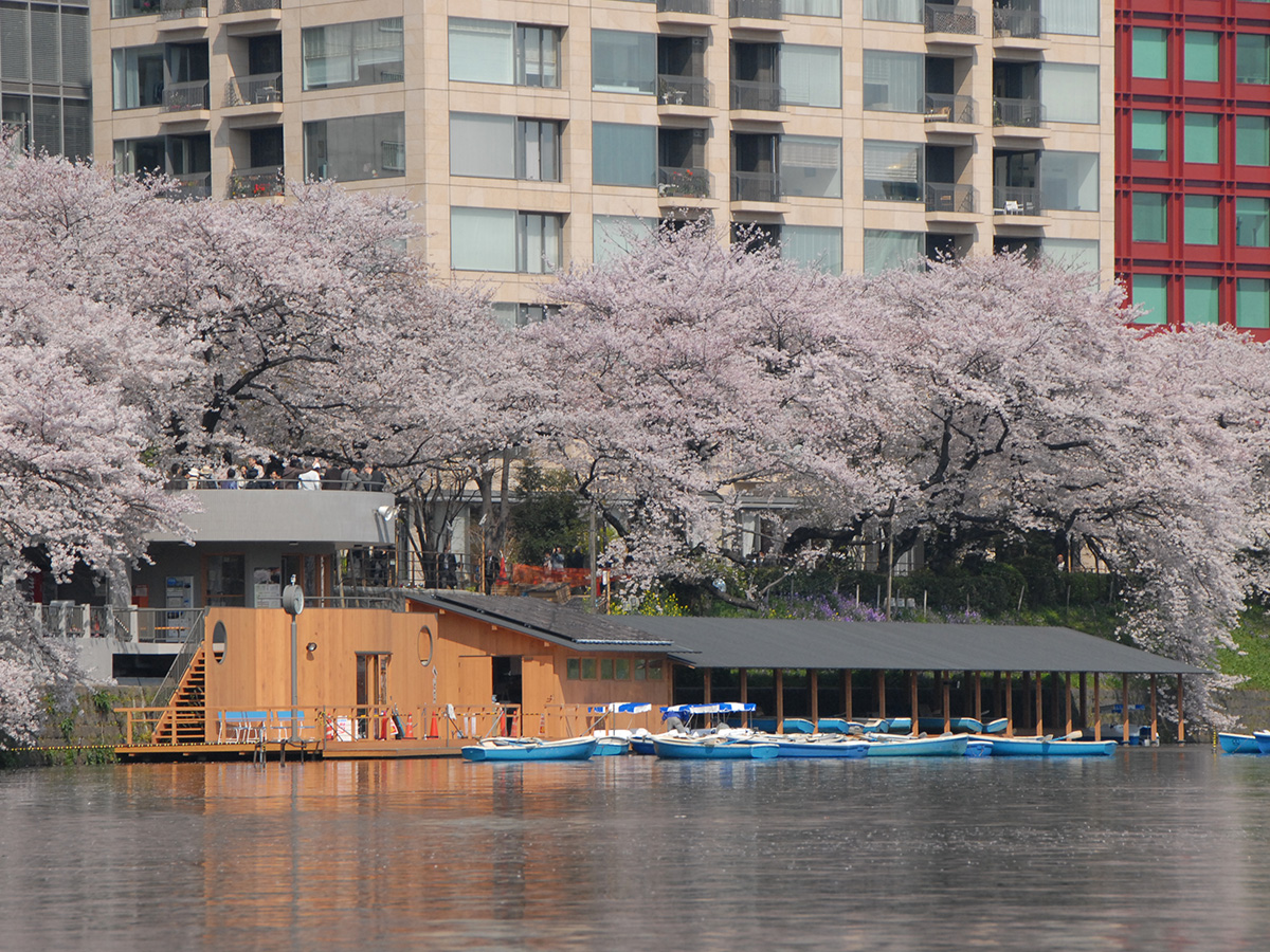 Chidori-ga-fuchi city park, boat ground