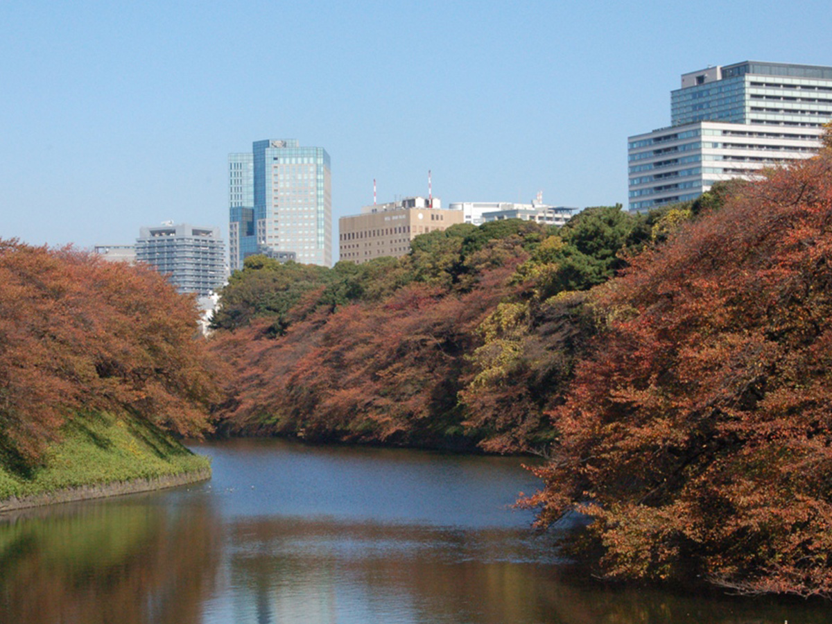 Chidori-ga-fuchi city park, colored leaves