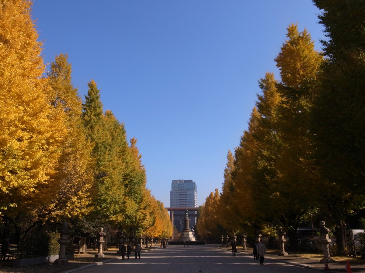 Yasukuni Shrine, colored leaves