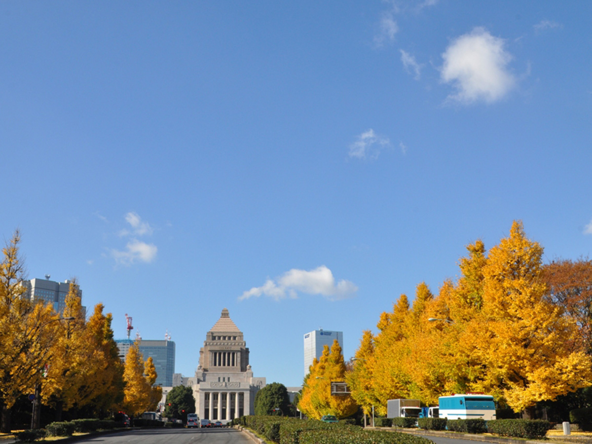 The Diet building, colored leaves