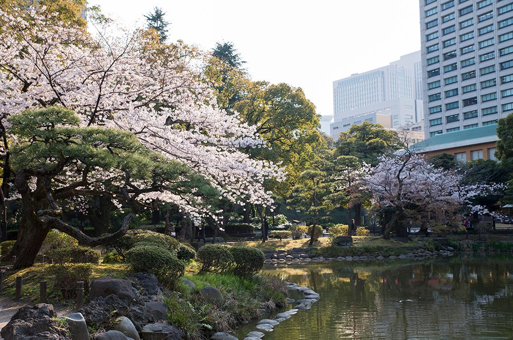Chidori-ga-fuchi city park